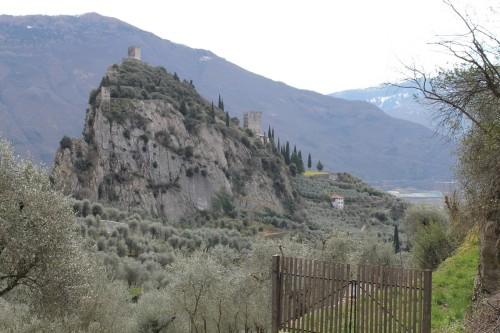 Olivaia di Arco - Vista sul Castello