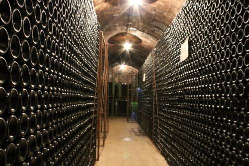 Visita in cantina - Grotta dello Spumante