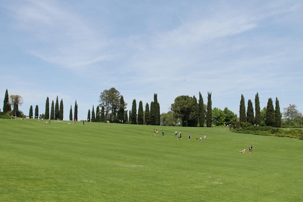 Parco Sigurtà - Prato erboso