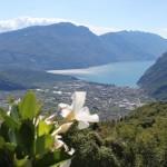Passeggiata dal Lago di Tenno al Rifugio San Pietro
