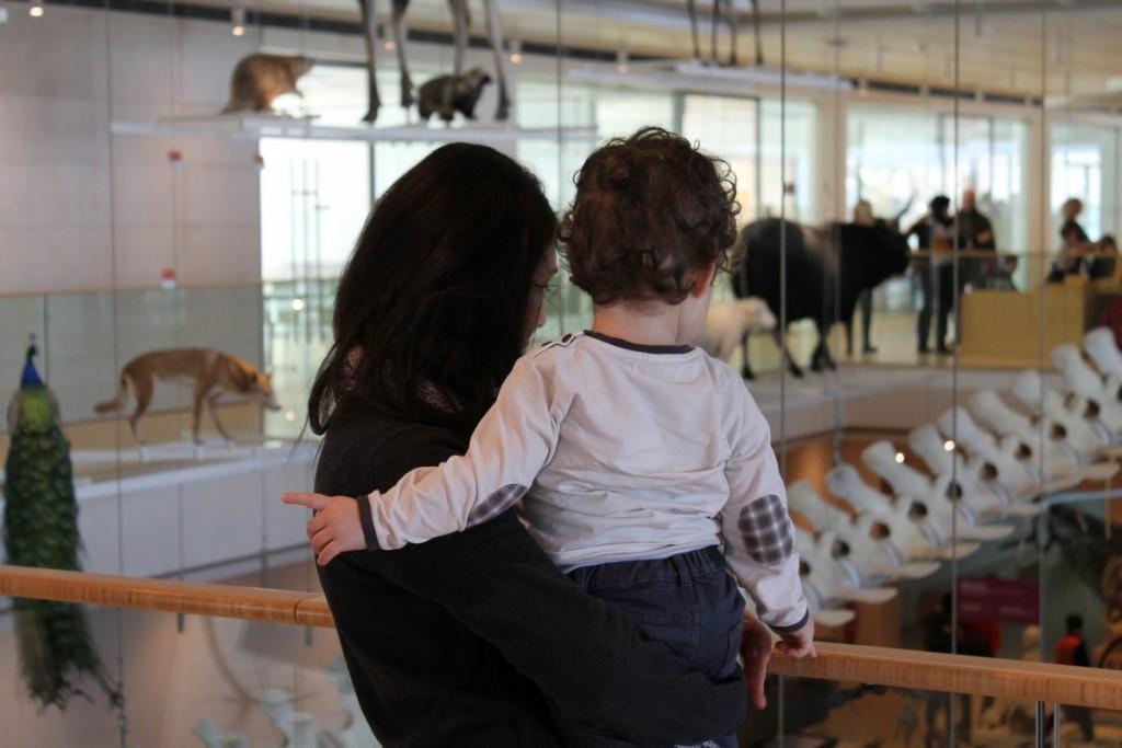 Muse Trento con bambini