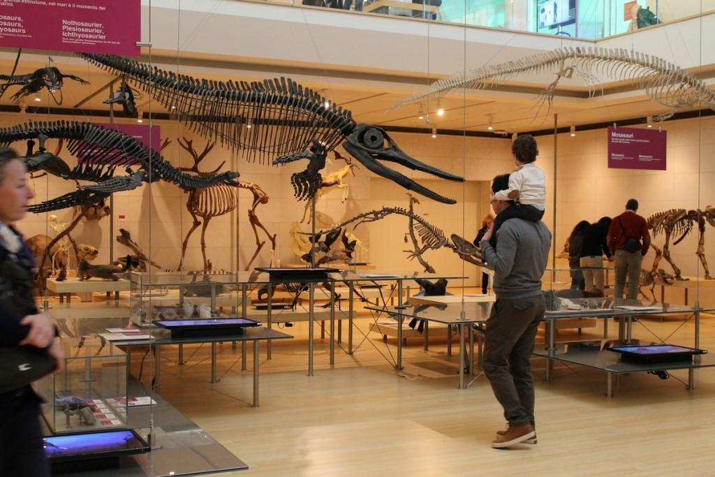 Muse Trento dinosauri