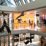 Il Muse di Trento, un museo amico dei bambini