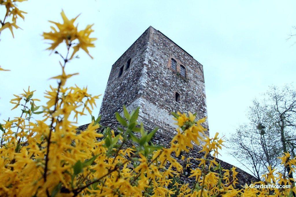 solferino torre